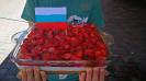 #СпасибоРодина ученик 2 класса СОШ17 Драздов Владимир